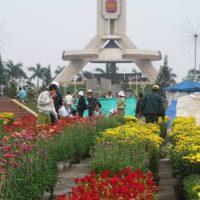 Đà Nẵng cấm mở các điểm bán hoa Tết ở trung tâm TP